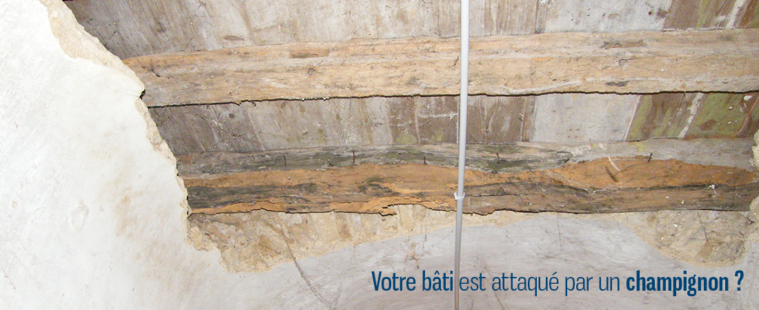 bati2-ventilation